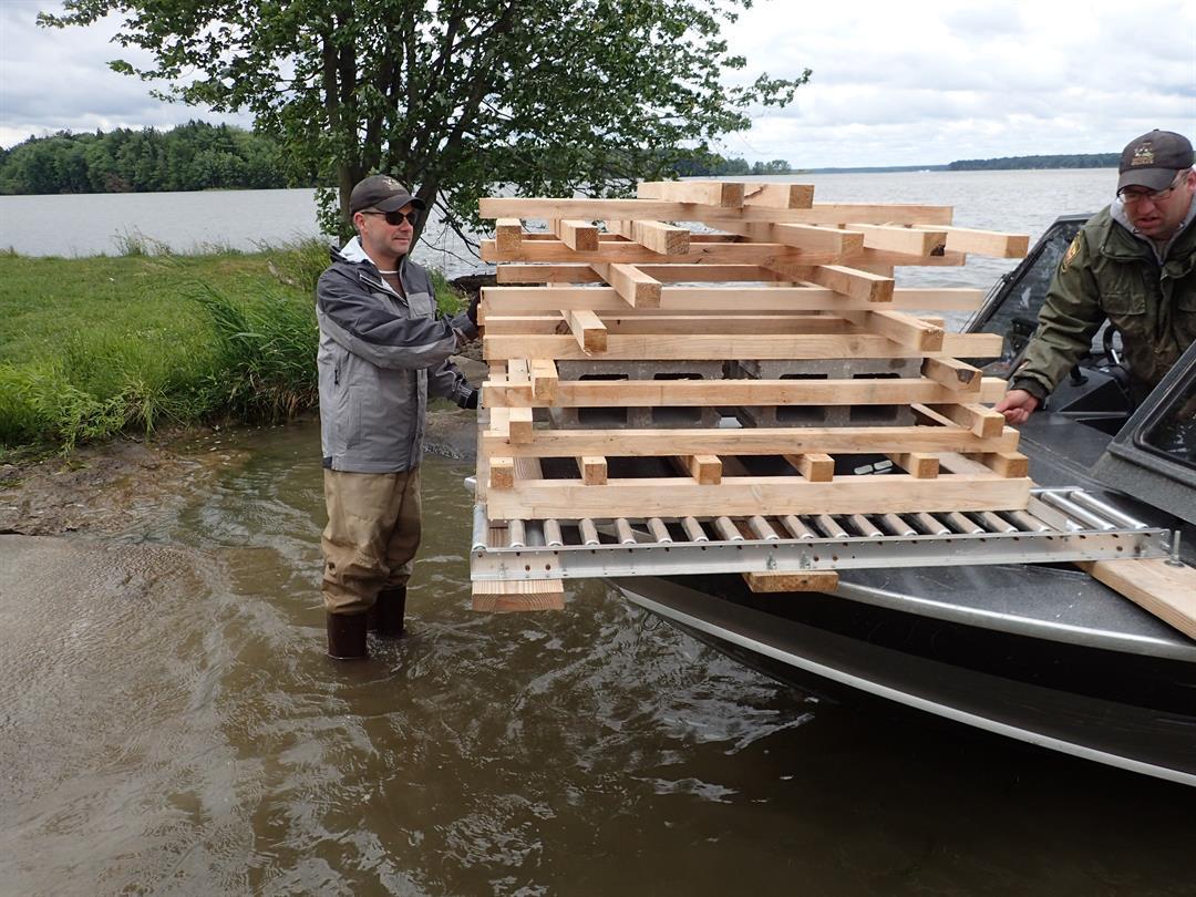 Pymatuning reservoir improvements provide better fishing for Pymatuning fishing report