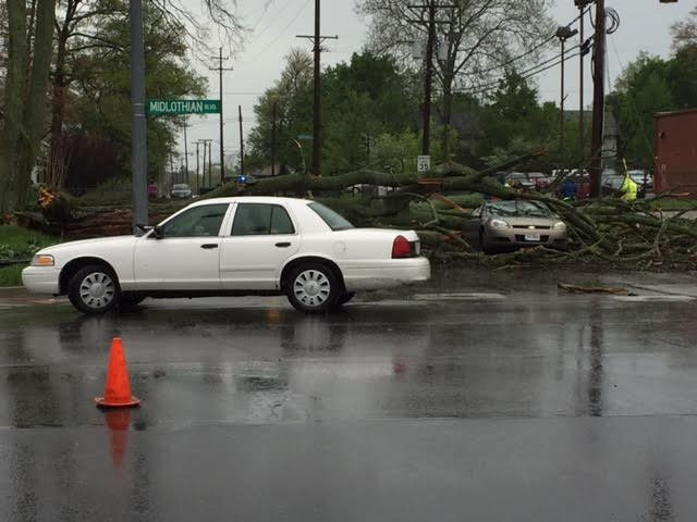 Tree falls on car at Hillman and Midlothian Boulevard  in Youngstown.