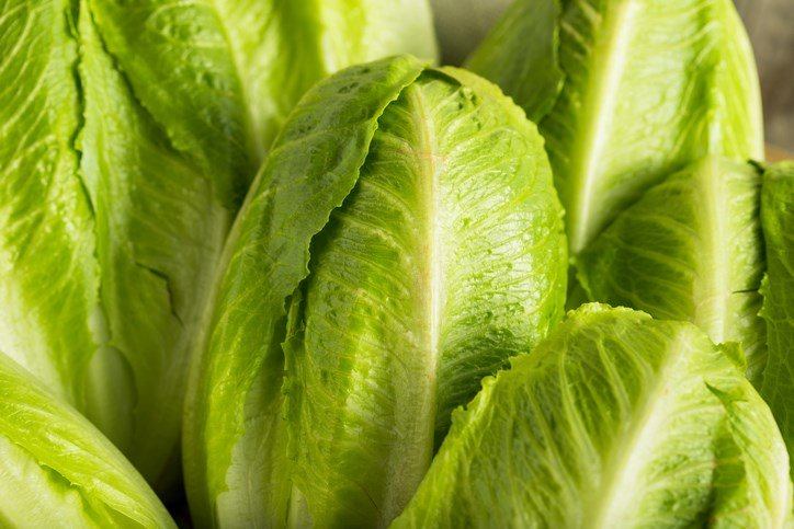 6 people sickened by contaminated lettuce in Ohio — CDC