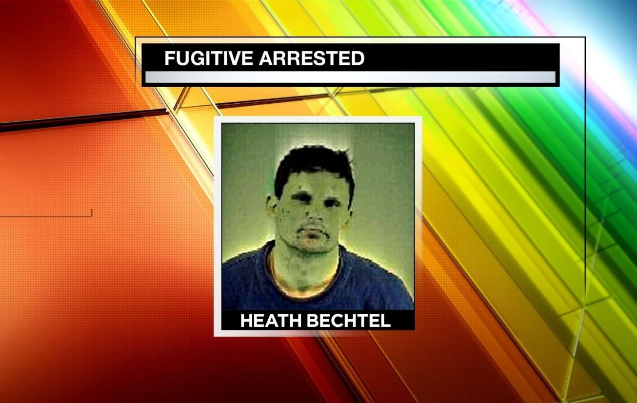 Fugitive nabbed with 300 lb pig in liberty motel wfmj for Heath motors greenville nc