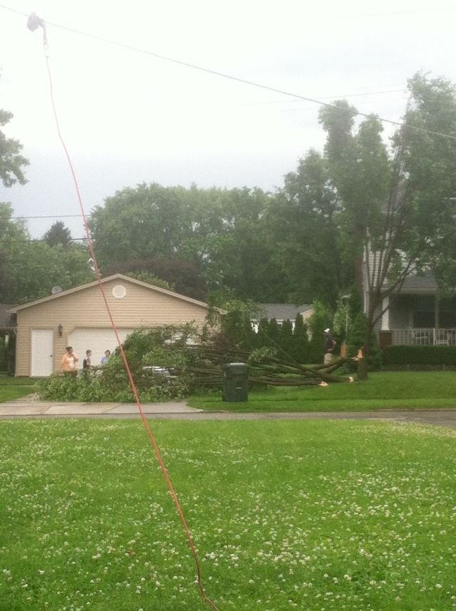 Tree down in Hubbard